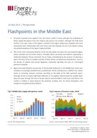 Flashpoints in the Middle East cover