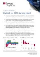 Outlook for 2013: turning tides? cover image