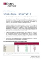 China oil data – January 2013 cover image
