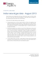 India natural gas data - August 2013 cover image