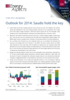 Outlook for 2014: Saudis hold the key cover image