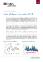 India oil data – November 2013 cover image