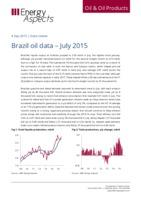 Brazil oil data - July 2015 cover image
