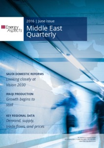 2016-06-21  - Middle East Quarterly cover