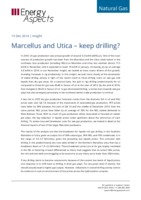 Marcellus and Utica – keep drilling? cover image