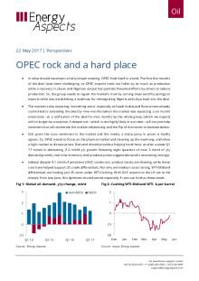OPEC: rock and a hard place cover image
