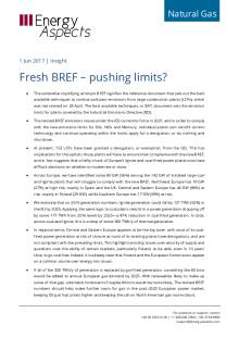 Fresh BREF – pushing limits? cover image