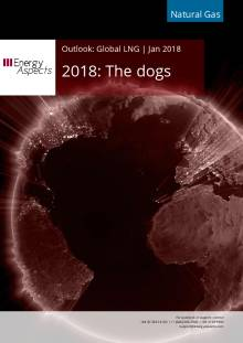 2018: The dogs cover image