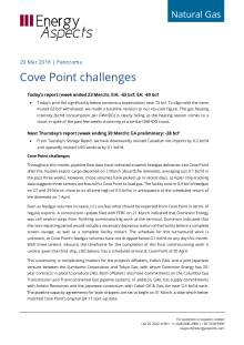 Cove Point challenges cover image