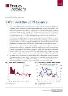 OPEC and the 2019 balance cover image