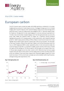 European carbon cover image