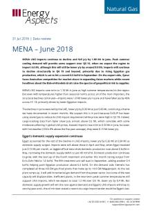 MENA – June 2018 cover image
