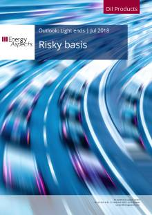 Risky basis cover image