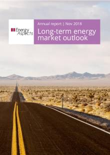 Long-term outlook cover image