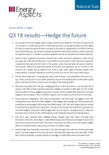 Q3 18 results—Hedge the future cover image