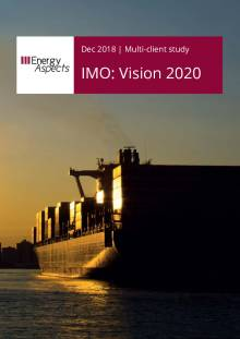 IMO: Vision 2020 cover image
