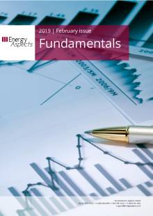 2019-02 Oil - Fundamentals - February 2019 cover