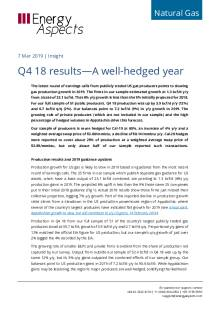 Q4 18 results—A well-hedged year cover image