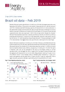 Brazil oil data – Feb 2019 cover image