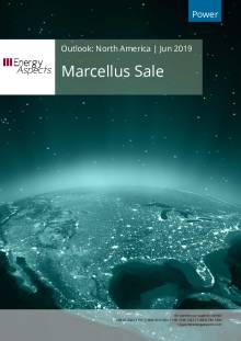 Marcellus Sale cover image