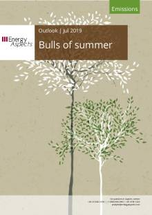 Bulls of summer cover image