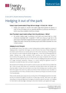 Hedging it out of the park cover image