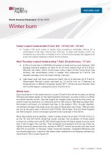 Winter burn cover image