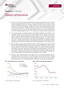 Dead cat bounce cover