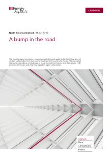 A bump in the road cover image