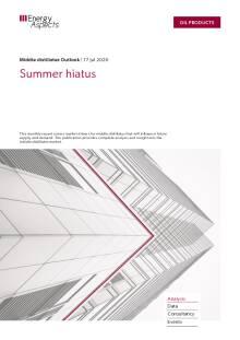 Summer hiatus cover image