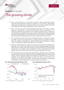 The growing divide cover