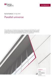 Parallel universe cover image
